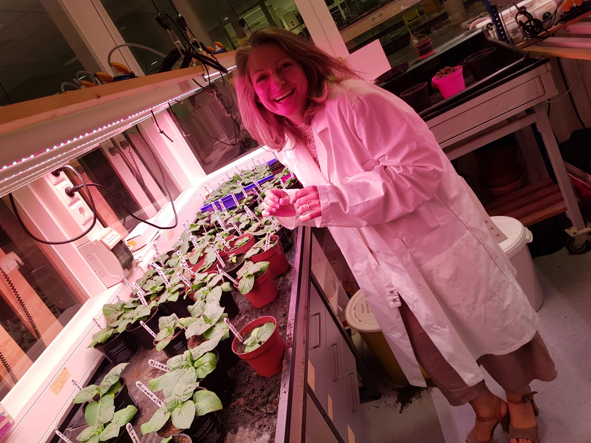 Petra van den berg staat in het biologielokaal van ISENDOORN college met scheikundejas aan. Voor allerlei plantjes die gekweekt worden